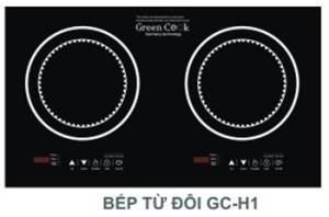 Bếp từ Green Cook GC H3